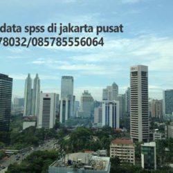 Jasa Olah Data SPSS di Jakarta Pusat