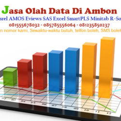 Jasa Olah Data SPSS Lisrel AMOS Eviews Excel di Ambon