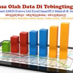 Jasa Olah Data SPSS Lisrel AMOS Eviews Excel di Tebingtinggi
