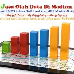Jasa Olah Data SPSS Lisrel AMOS Eviews Excel di Madiun